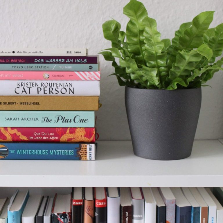 Ein wunderbarer Start ins Jahr: Lesemonat Januar
