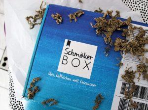Unboxing: Schmökerbox Perspektivenwanderung
