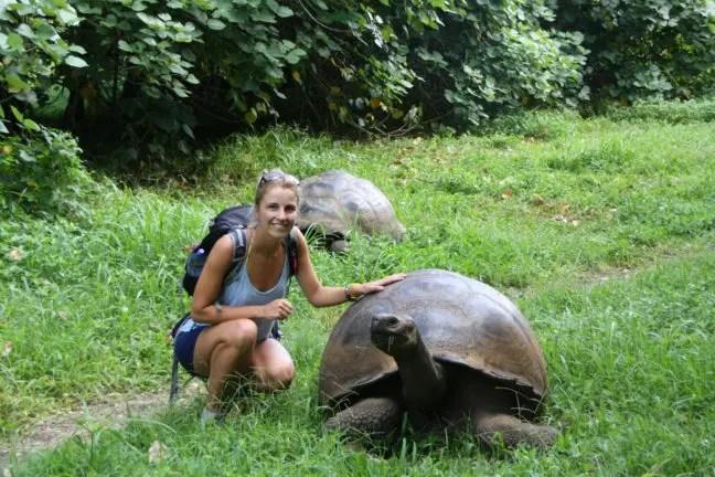 Galapagosreuzenschildpad, verboden om aan te raken (hoor ik later).