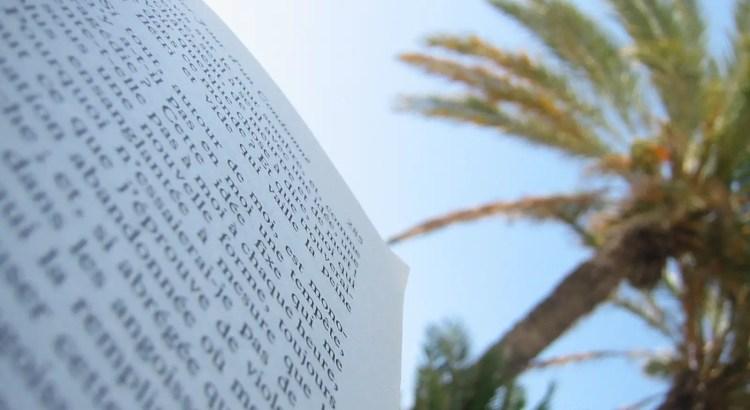 boek lezen palmboom