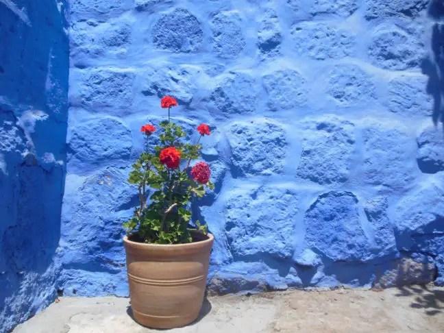 Scherpe kleurcontrasten in het Santa Catalina klooster in Arequipa