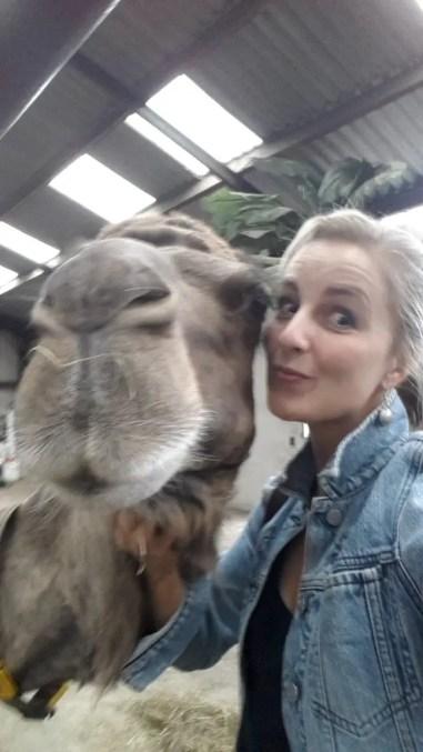 Een zeer aaibare kameel poseert met me mee