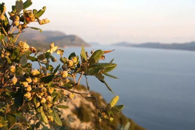 Prachtige uitzichten op de kustroute van Split naar Dubrovnik.
