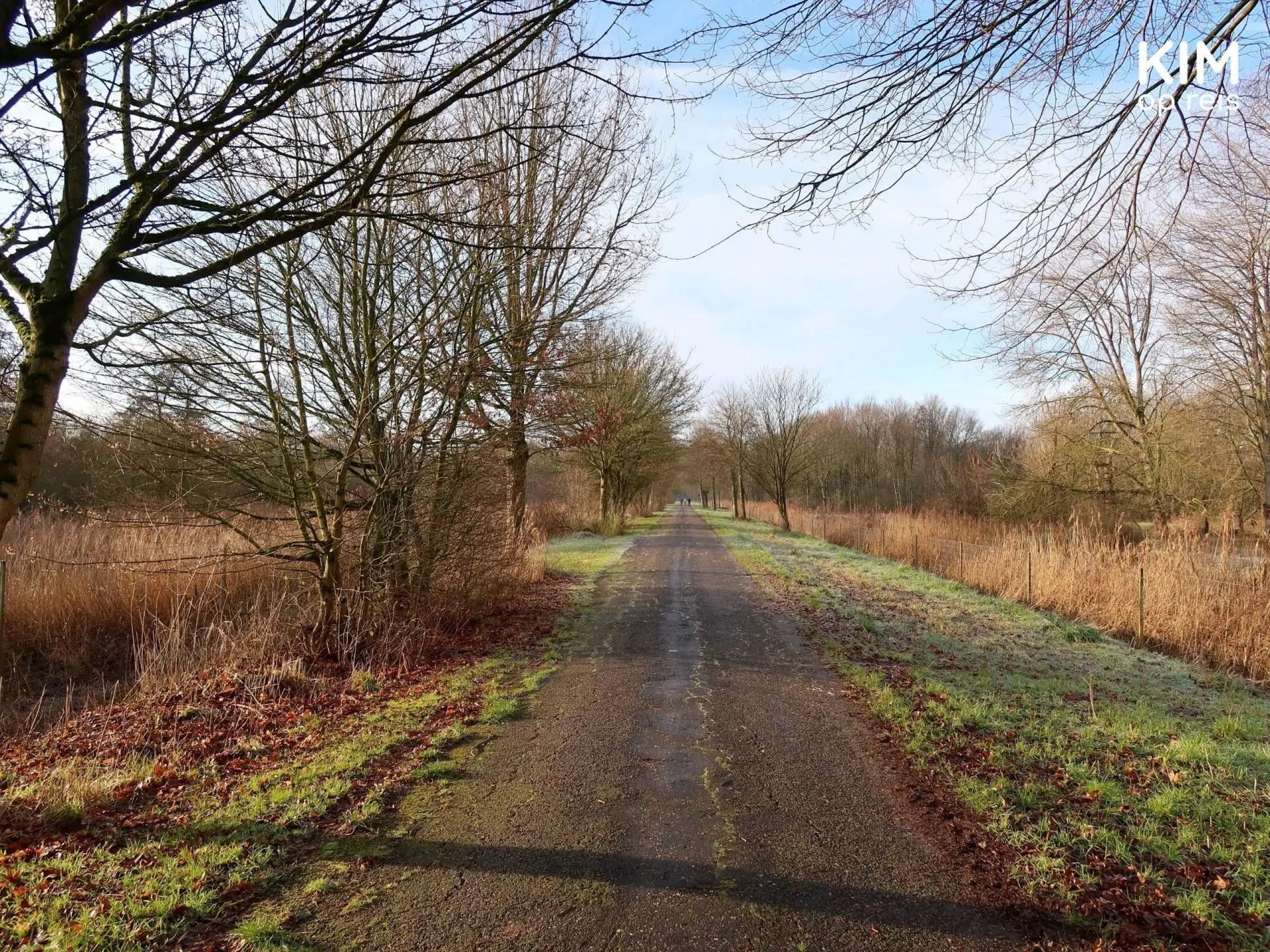 Wandelen Natuurpark Lelystad: wandelpad begrensd door gras en bomen