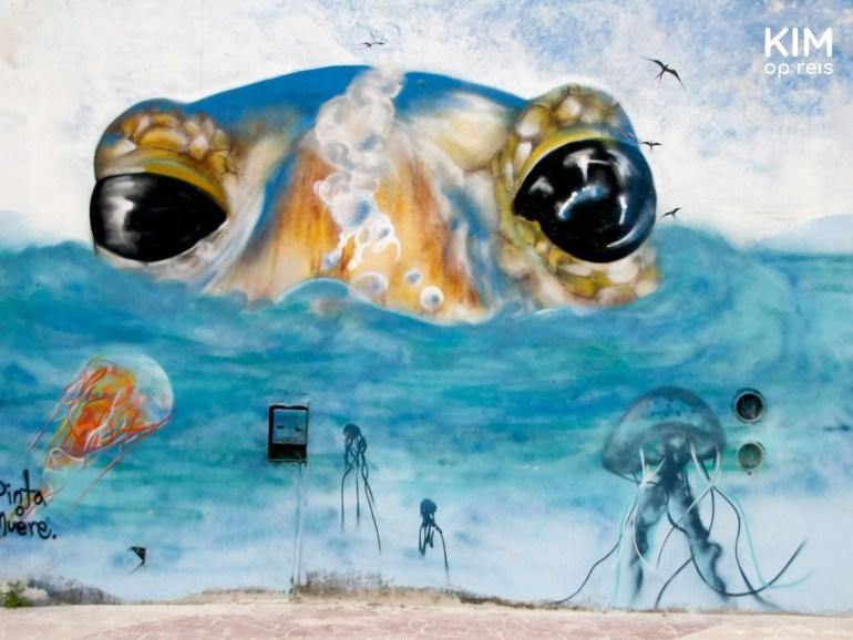 Isla Holbox street art ogen schildpad: muurschildering van een schildpad die zijn kop boven het water uitsteekt