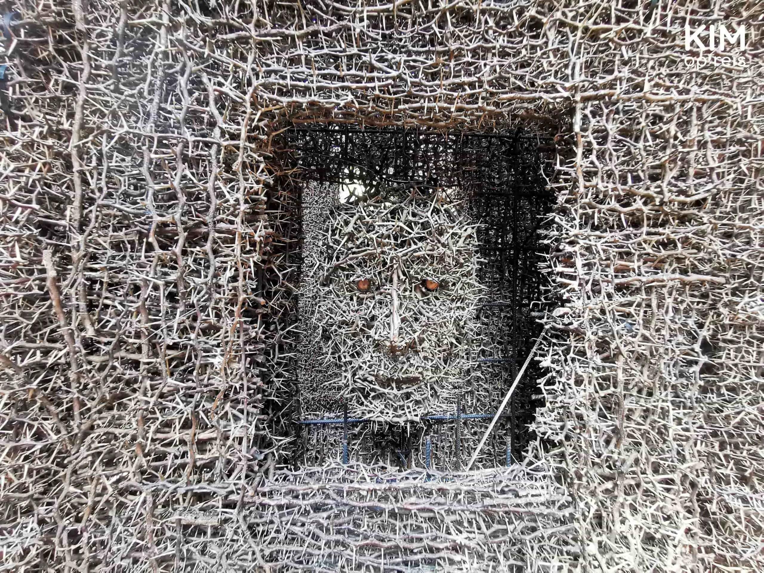 Detail kathedraal van doornen Curacao: gezicht in de muur gemaakt van doornen