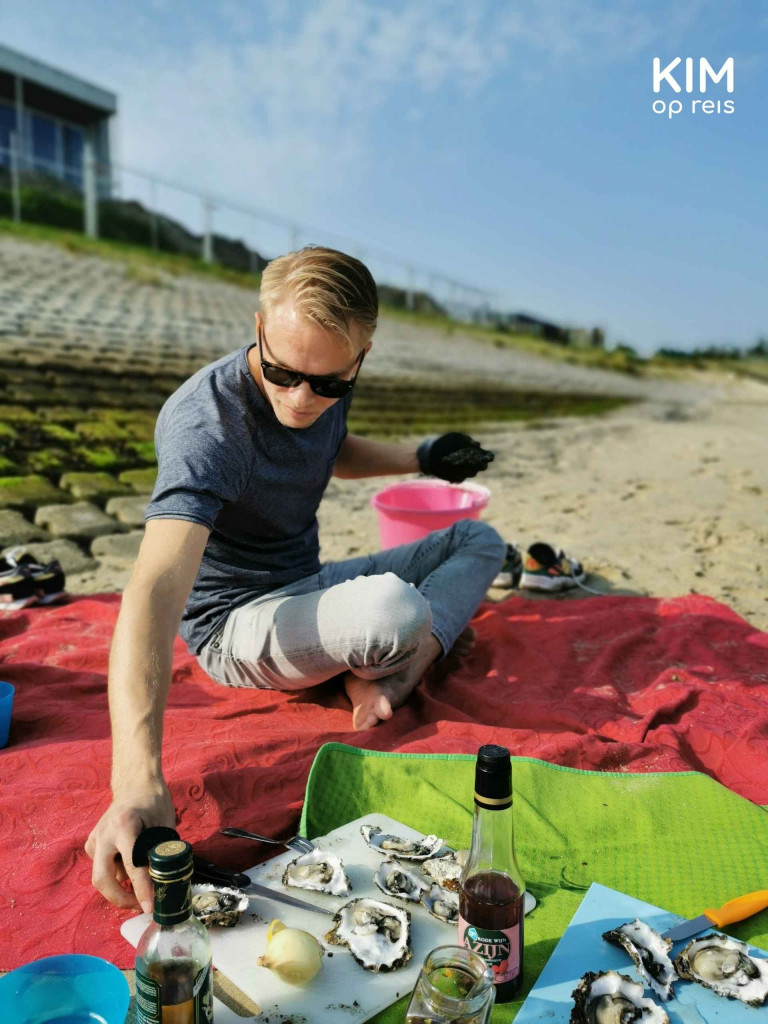Oyster picking Zeeland: man opens oysters