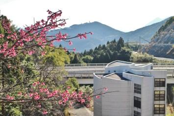 内之浦の宇宙の歴史がつまった、資料館とロケット桜