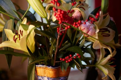 Holiday, Flowers, Lilies,Red