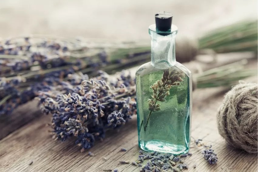 6 Essential Oils for Heartbreak: How Aromatherapy Promotes Healing