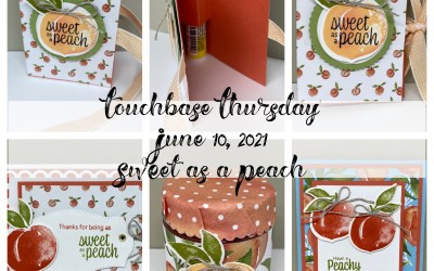 Recap of my Facebook Live from Thursday, June 10 – Sweet as a Peach Bundle by Stampin' Up!