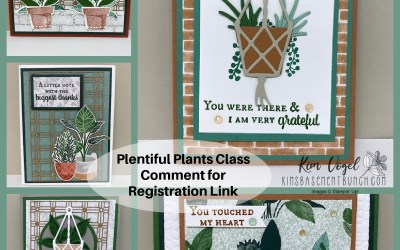 Facebook LIVE Replay from July 1st – Plentiful Plants
