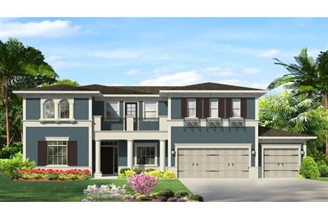 Wesley Chapel Florida Real Estate | Wesley Chapel Realtor | New Homes for Sale | Wesley Chapel