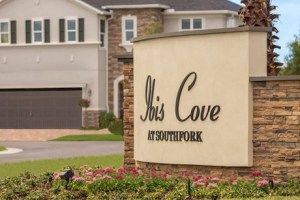 Read more about the article Ibis Cove II at South Fork Riverview Florida Real Estate | Riverview Realtor | New Homes for Sale | Riverview Florida