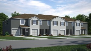 Read more about the article Osprey Lakes New Town Home Community Riverview Florida