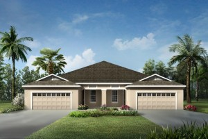 Read more about the article Boyette Park Riverview Florida Real Estate | Riverview Realtor | New Homes for Sale | Riverview Florida