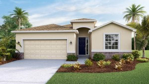 Brooker Ridge Brandon Florida Real Estate | Brandon Realtor | New Homes for Sale | Brandon Florida