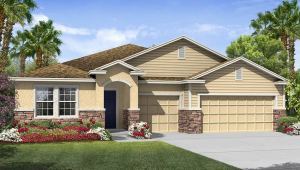 Read more about the article Brooker Ridge New Home Community Brandon Florida
