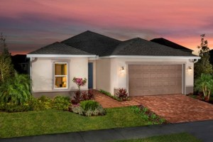 Read more about the article Ibis Cove II at South Fork Riverview Florida Real Estate   Riverview Realtor   New Homes for Sale   Riverview Florida