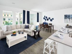 Read more about the article Bearss Landing New Town Home Community Tampa Florida