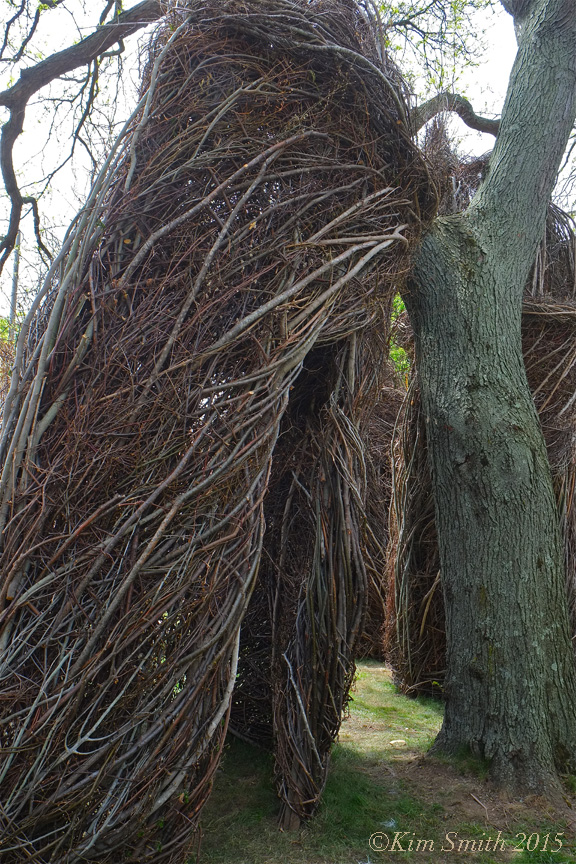 Patrick Dougherty Stickwork Peabody Essex -1 w ©Kim Smith 2015