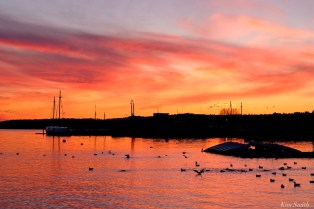 jodrey fish pier sunset gloucester massachusetts -1