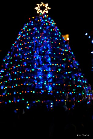 Lobster Trap Tree Lighting Gloucester MA 2019 copyright Kim Smith - 36