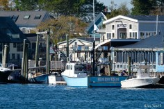 Wicked Tuna Filming Gloucester Harbor Bad Fish copyright Kim Smith - 7 of 10