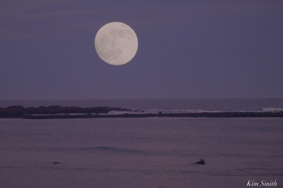 December Full Wolf Moon Brace Cove Gloucester Essex County copyright Kim Smith - 1 of 1