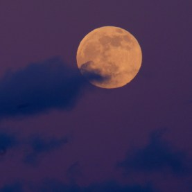 December Full Wolf Moon Gloucester Essex County copyright Kim Smith - 1 of 1