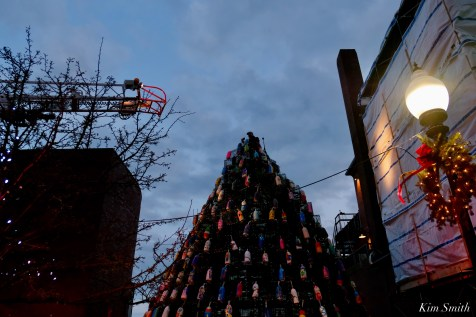 Lobster Trap Tree Lighting 2020 Gloucester Essex County Massachiusetts copyright Kim Smith - 10 of 16