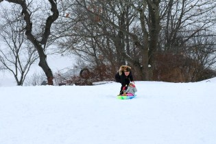 Sledding! copyright Kim Smith - 1 of 35