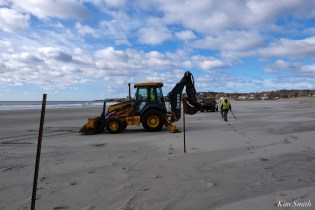 Piping Plover Fence Installation Good Harbor Beach Essex County March 29, 2021 copyright Kim Smith - 5 of 9