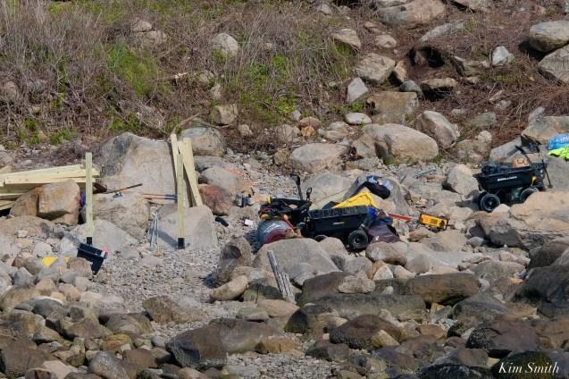 #savesaltisland Salt Island Gloucester MA copyright Kim Smith - 4 of 14