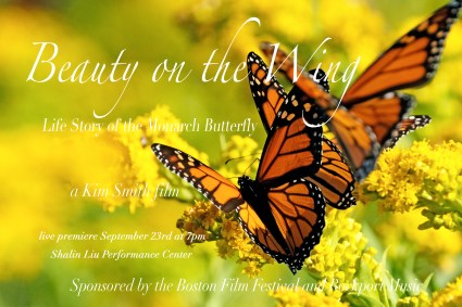 Beauty on the Wing fundrasing postcard 4.5 x 6