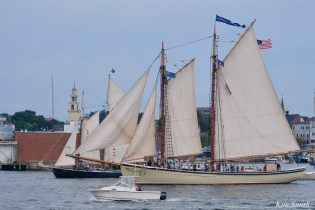 Schooner Parade of Sail American Eagle Alert Gloucester 2021 copyright kim Smith - 13 of 52