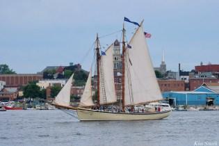 Schooner Parade of Sail American Eagle Gloucester 2021 copyright kim Smith - 11 of 52