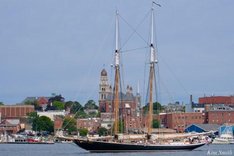 Schooner Parade of Sail Columbia Gloucester 2021 copyright kim Smith - 1 of 1
