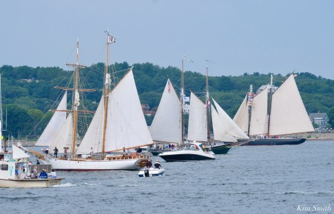 Schooner Parade of Sail Gloucester 2021 copyright kim Smith - 2 of 2