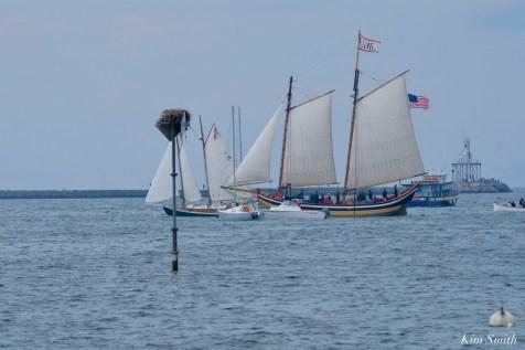 Schooner Parade of Sail Gloucester 2021 copyright kim Smith - 46 of 52