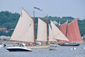 Schooner Parade of Sail Roseway American Eagle Gloucester 2021 copyright kim Smith - 1 of 6