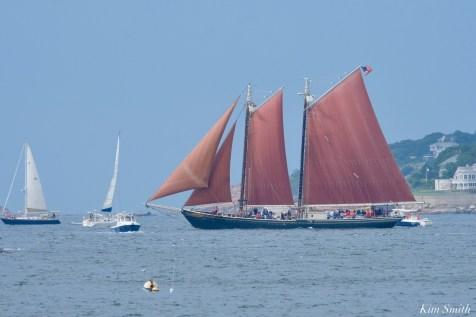 Schooner Parade of Sail Roseway Gloucester 2021 copyright kim Smith - 37 of 52