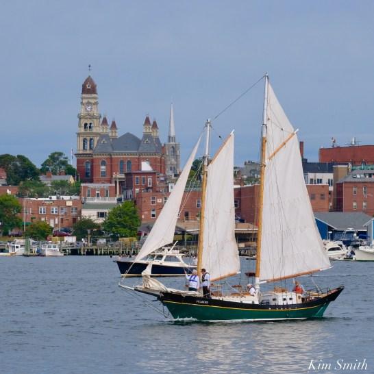 Schooner Parade of Sail Sycamore Gloucester 2021 copyright kim Smith - 29 of 52