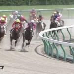 木村牧場生産馬マイネルオスカル、メイクデビュー新馬勝ち!
