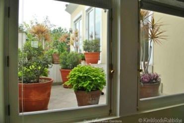 The view to the garden from inside is of colourful pots and a cheery landscape.