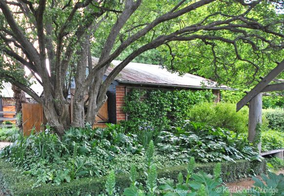 Garden shed©Kim Woods Rabbidge_edited-1