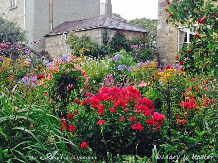 A profusion of summer's colour.