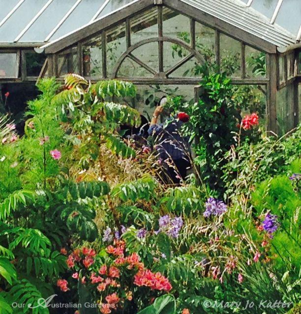 Green house in the garden.