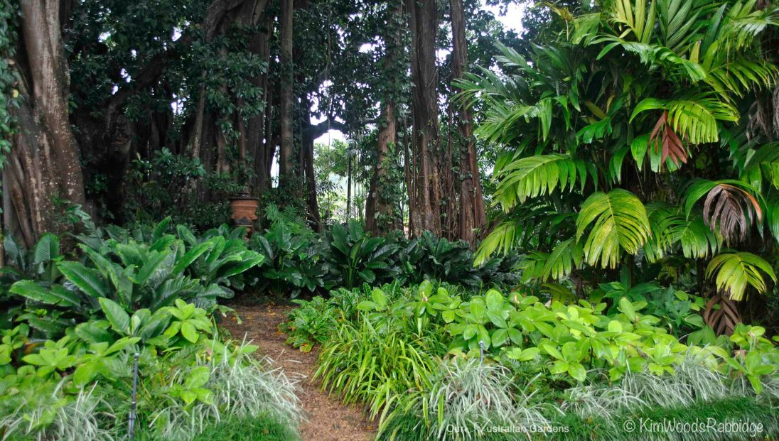 The Figs - a beautiful, rarely seen private garden.