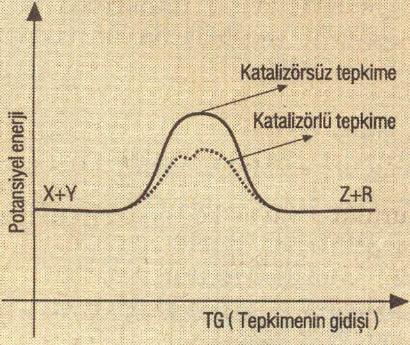 Kimyasal Reaksiyon grafiği